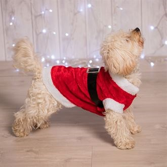 Dress your dog as Santa this year. Includes Red body, White bands to neck, back and legs and Black belt with buckle